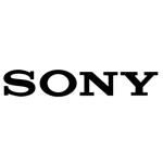 Sony baut gekrümmte Kamerasensoren, um Fotos zu entzerren