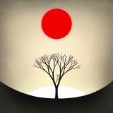 App-Review: Prune